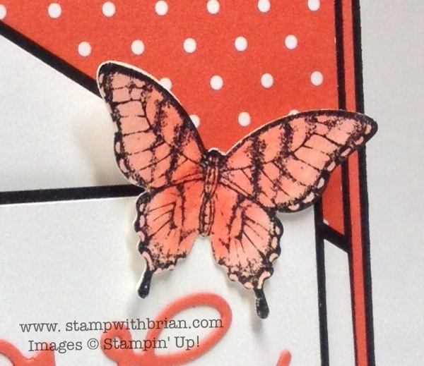 Papillon Potpourri, Stampin' Up!, Brian King, PPA176