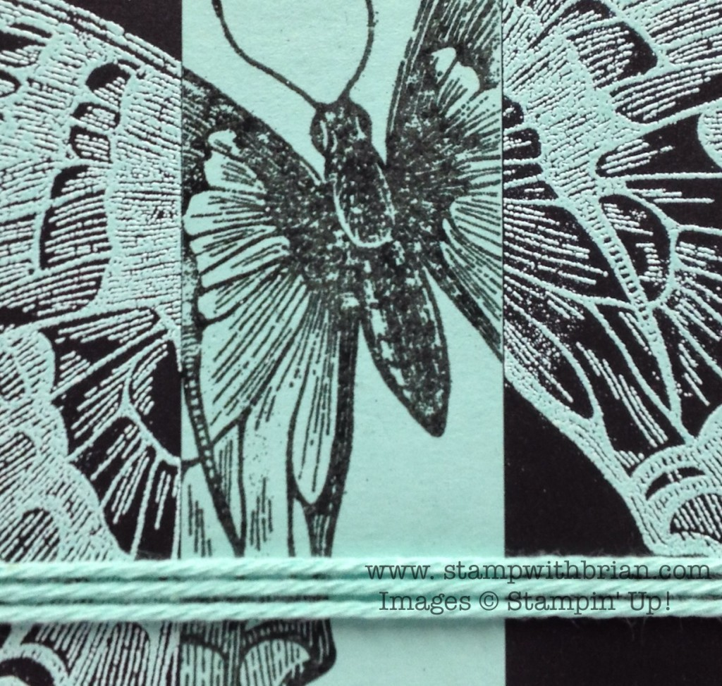 Swallowtail, Banner Greetings, Stampin' Up!, Brian King, FMS124