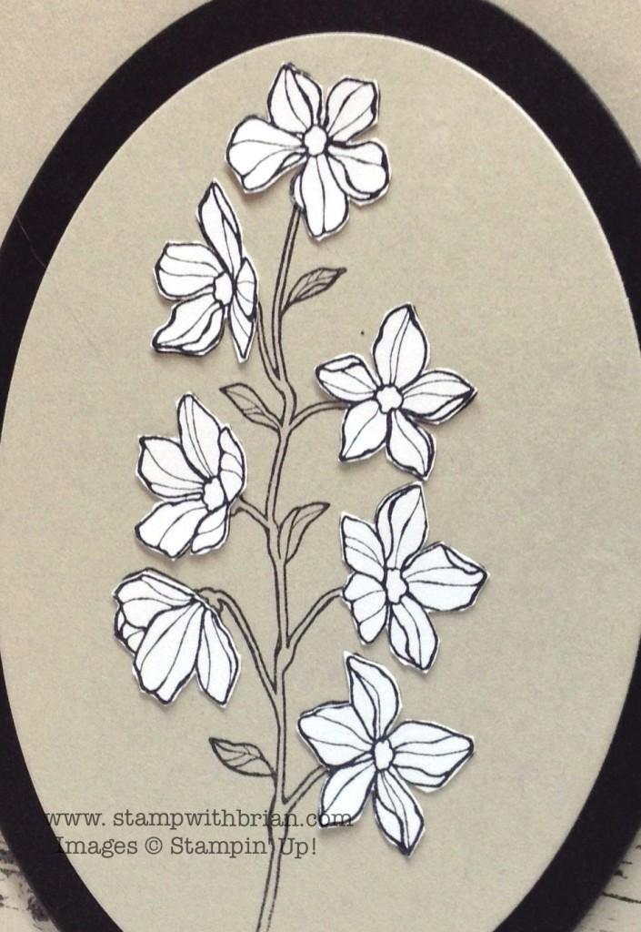 Peaceful Petals, Sweetly Framed, Hardwood, Stampin' Up!, Brian King