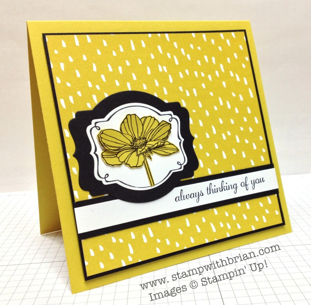 Peaceful Petals, Express Yourself, Stampin' Up!, Brian King, DD94