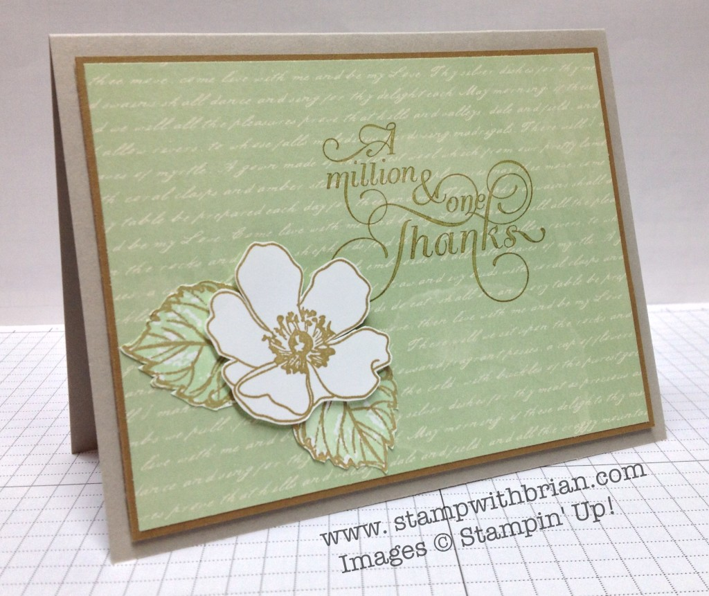 Fabulous Florets, Gently Falling, Million & One, Stampin' Up!, Brian King, FabFri38