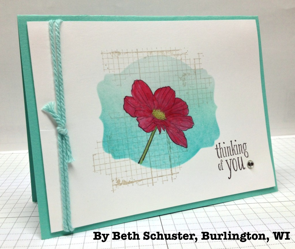 By Beth Schuster,, stampwithbrian.com