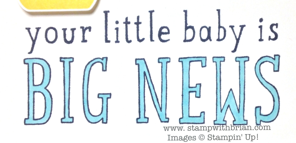 Big News, Something for Baby, Stampin' Up!, Brian King, FMS142