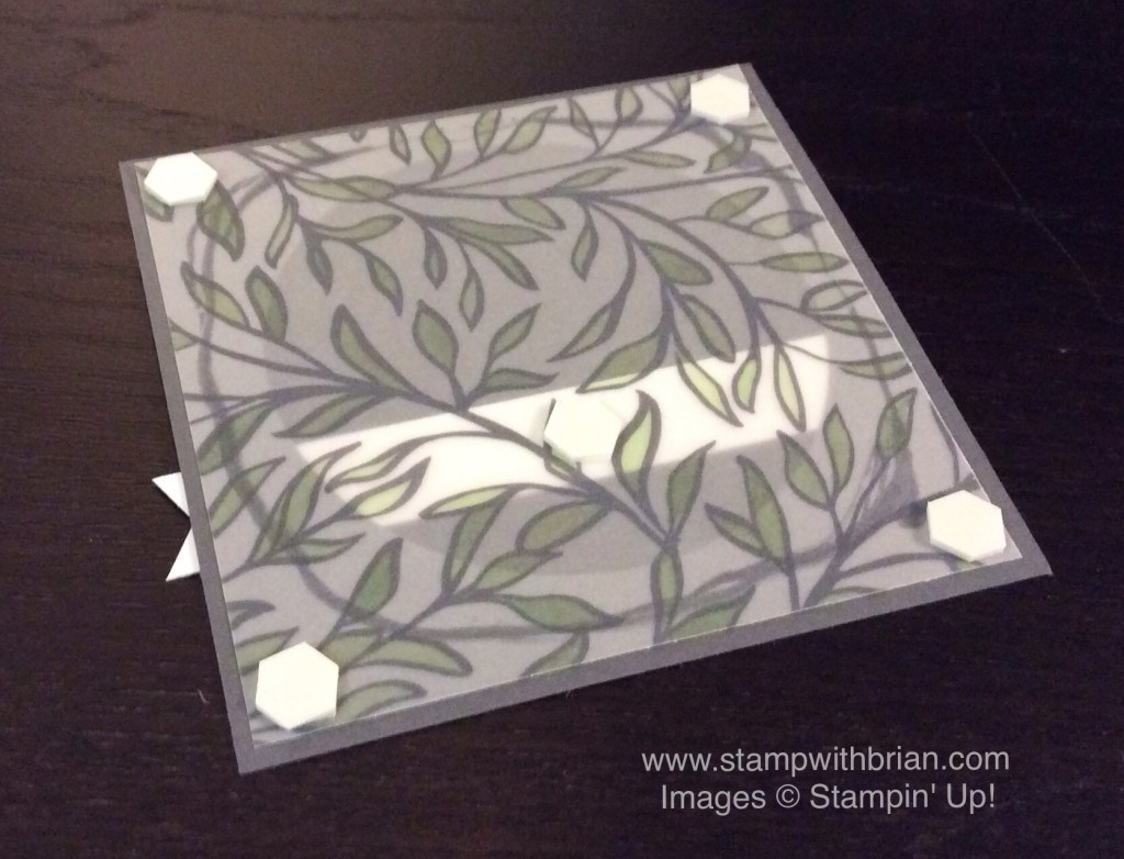 Tips for using vellum, Sheer Perfection Designer Vellum Stack, Stampin' Up!, Brian King