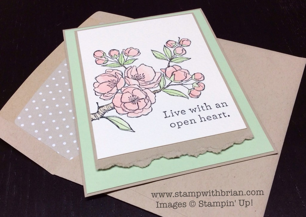 Indescribable Gift, An Open Heart, Stampin' Up!, Brian King, PP241
