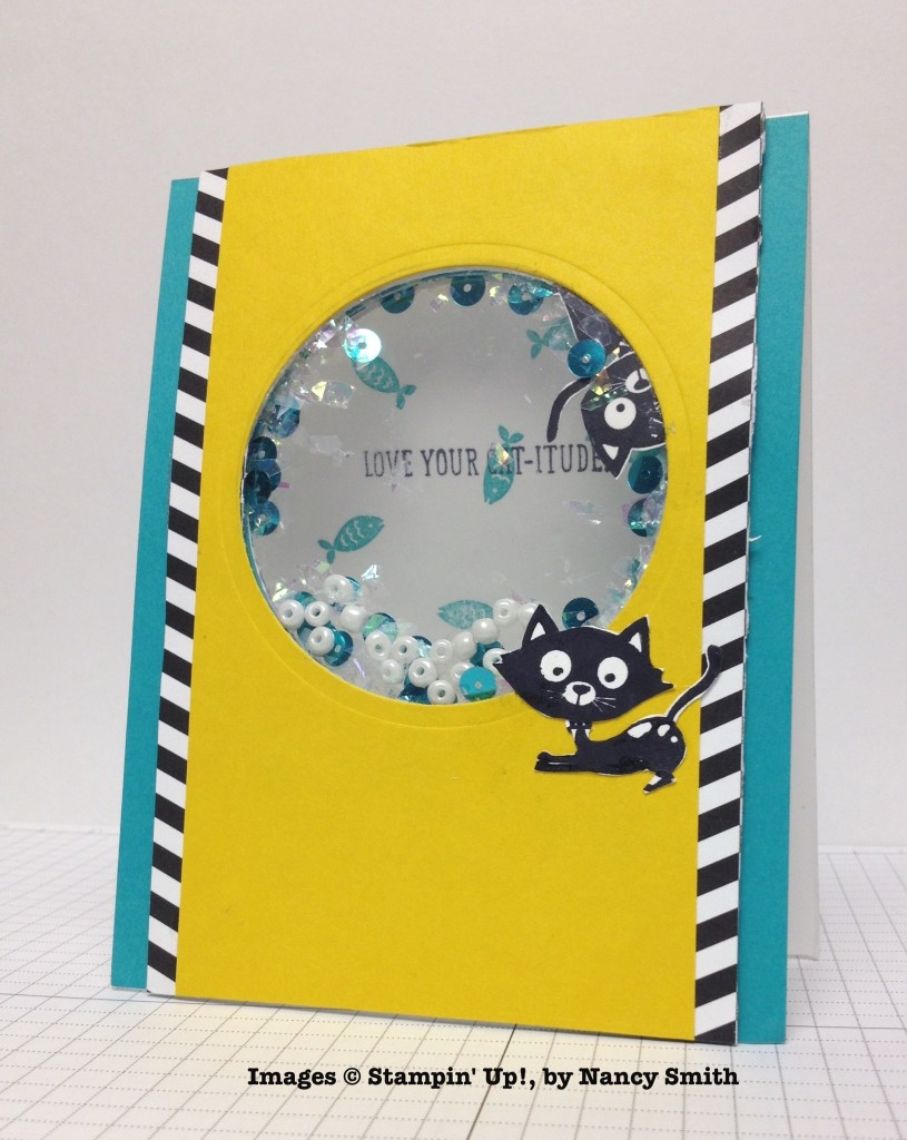 Nancy Smith, card swap, Stampin' Up!
