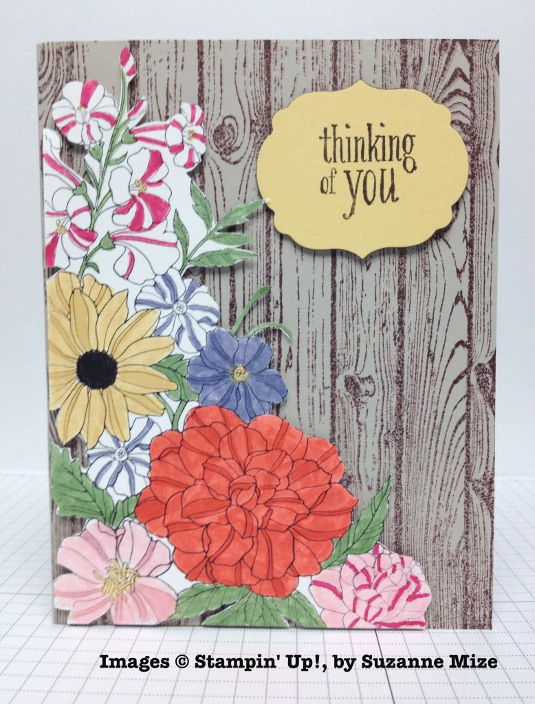 Suzanne Mize, card swap, Stampin' Up!