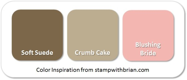 Stampin' Up! Color Inspiration: Soft Suede, Crumb Cake, Blushing Bride