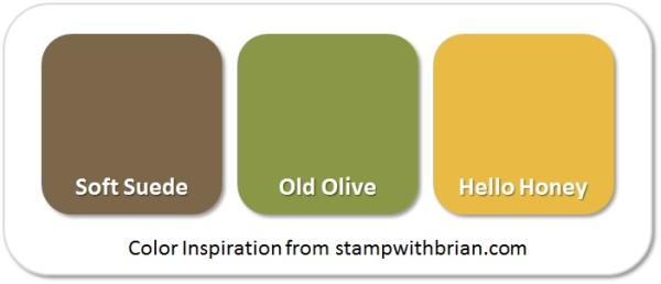 Stampin' Up! Color Inspiration: Soft Suede, Old Olive, Hello Honey