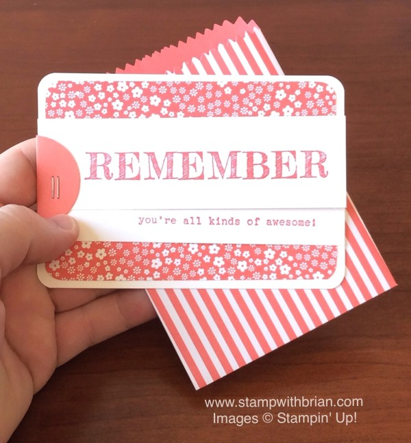 Words of Truth, Mini Treat Bag Thinlits, Stampin' Up!, Brian King
