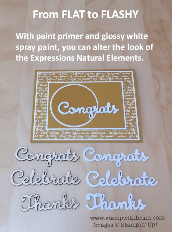 Converting Expressions Natural Elements from Flat to Flashy, Stampin' Up!, Brian King