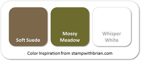 Stampin' Up! Color Inspiration: Soft Suede, Mossy Meadow, Whisper White