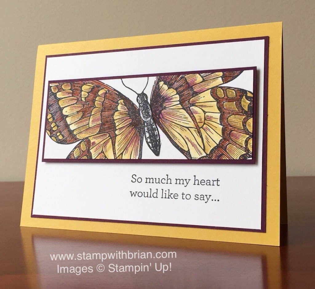 Swallowtail, An Open Heart, Stampin' Up!, Brian King, FabFri77, sympathy card
