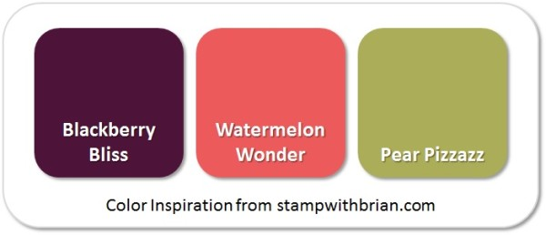 Stampin' Up! Color Inspiration: Blackberry Bliss, Watermelon Wonder, Pear Pizzazz