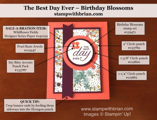 Birthday Blossoms, Wildflower Fields Designer Series Paper, Stampin' Up!, Brian King, PPA288