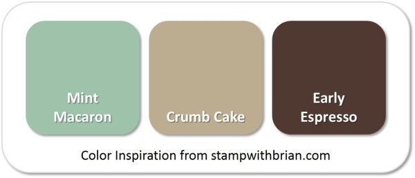 Stampin' Up! Color Inspiration: Mint Macaron, Crumb Cake, Early Espresso