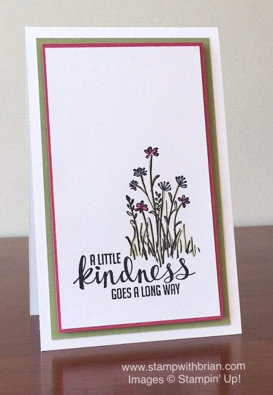 Kinda Eclectic, In the Meadow, Stampin' Up!, Brian King, clean and simple thank you card
