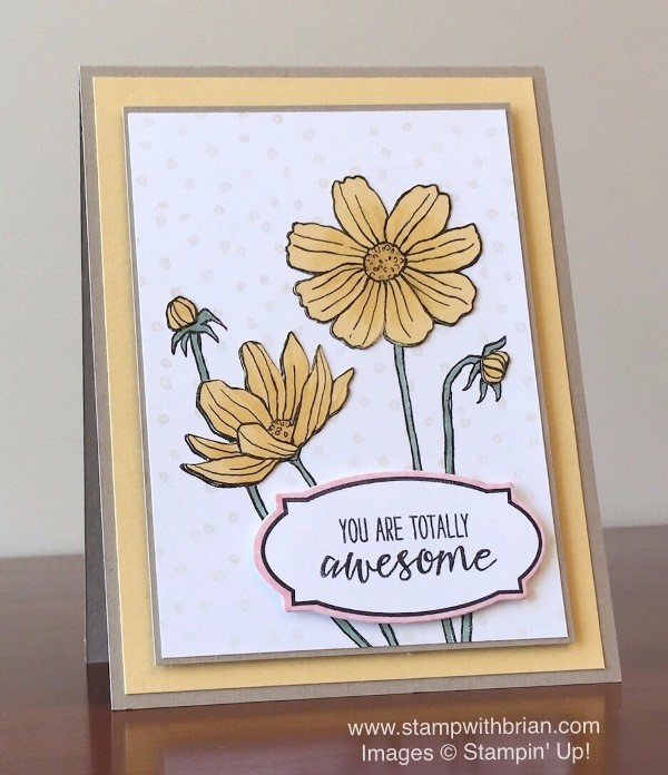 Helping Me Grow, Grateful Bunch, Rose Wonder, Number of Years, Stampin' Up!, Brian King, PPA293