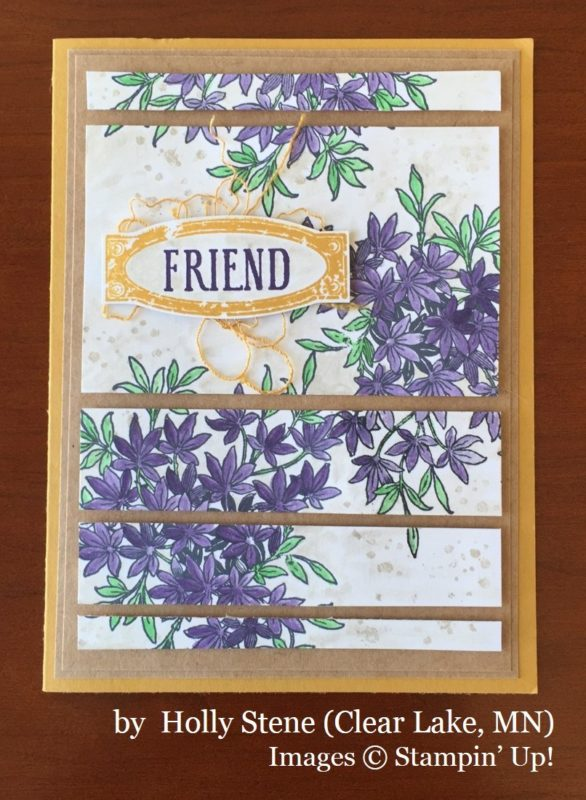 Holly Stene, Clear Lake MN, Stampin' Up!, card swap