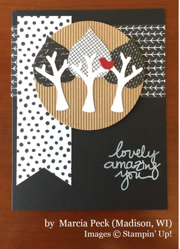 Marcia Peck, Madison WI, Stampin' Up!, card swap