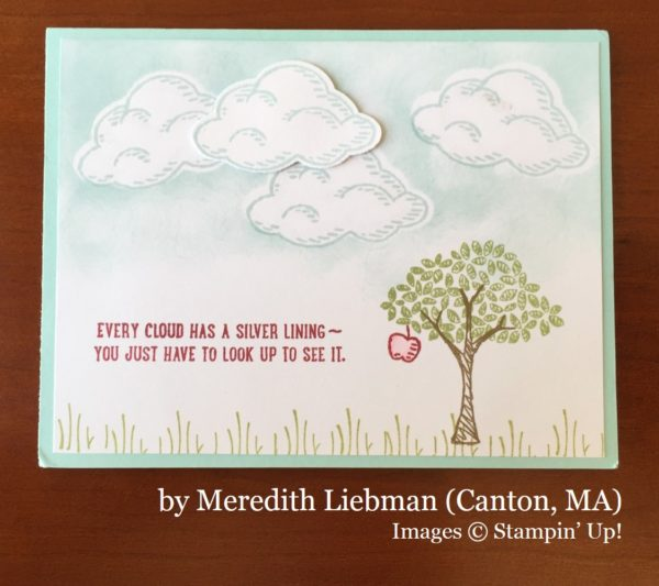 Meredith Liebman, Canton MA, Stampin' Up!, card swap