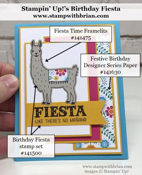 Birthday Fiesta, Stampin' Up!, Brian King, FMS240