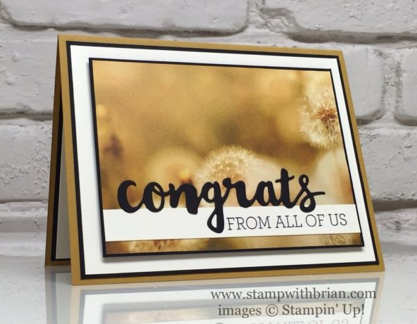 Sunshine Wishes Thinlits, Crazy About You, Serene Scenery Designer Series Paper Stack, Stampin' Up!, Brian King, Congratulations card