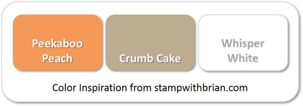 Stampin' Up! Color Inspiration: Peekaboo Peach, Crumb Cake, Whisper White