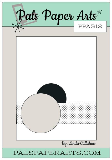 PPA312