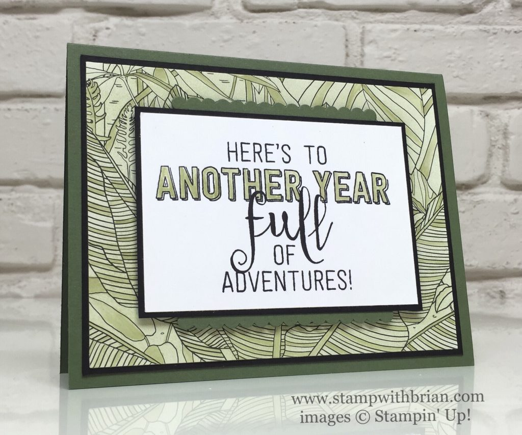 Balloon Adventures, Inside the Lines Designer Series Paper, Stampin' Up!, Brian King, GDP063