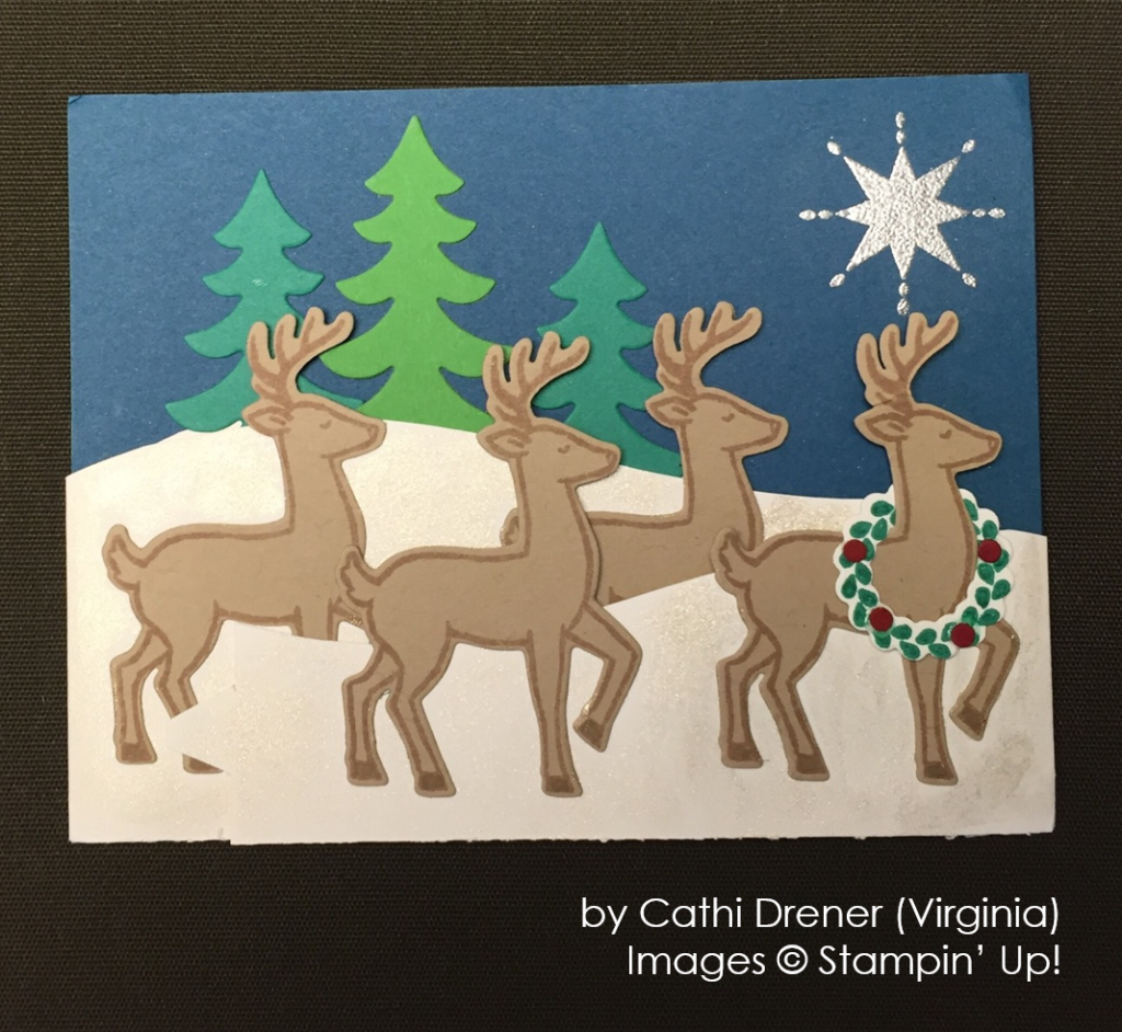 by Cathi Diener, Stampin' Up!