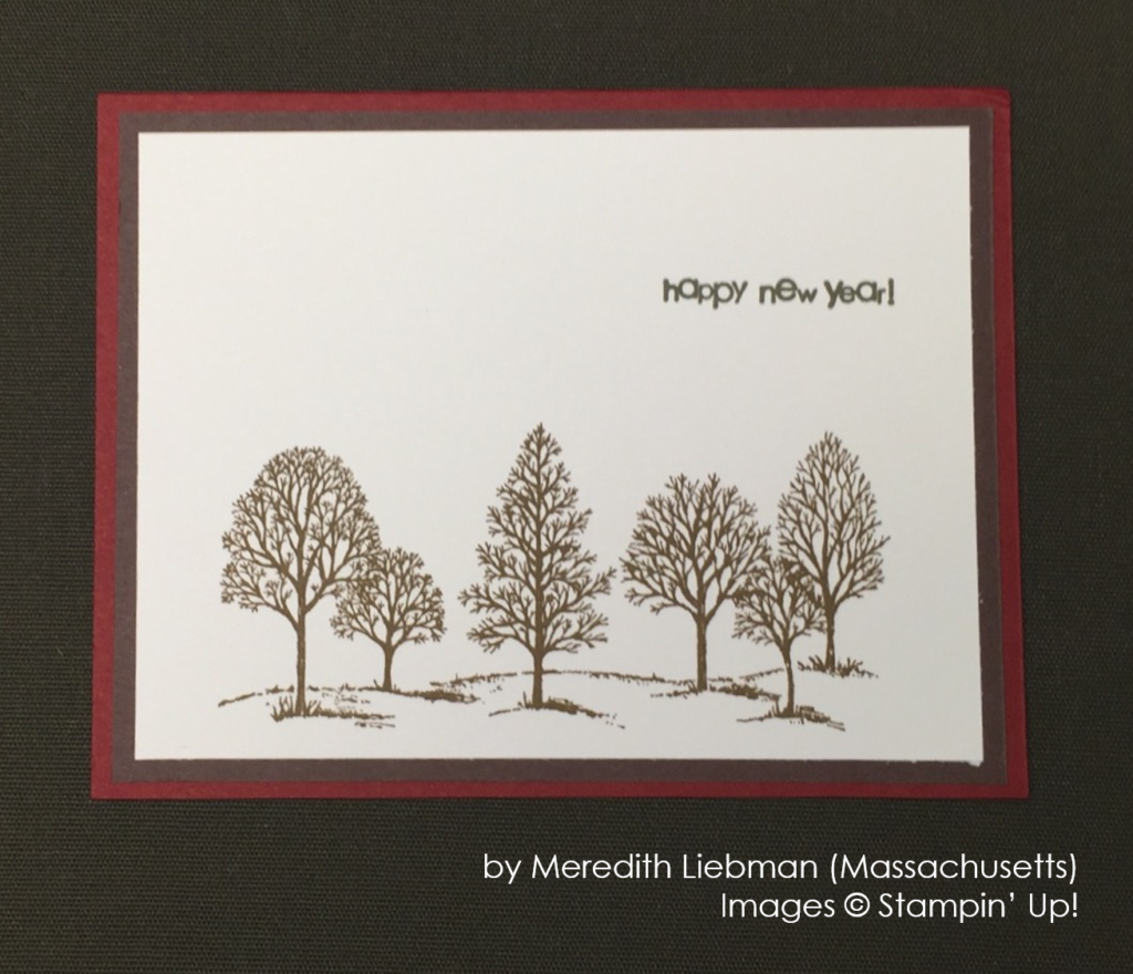 by Meredith Liebman, Stampin' Up!, Holiday One-for-One Swap