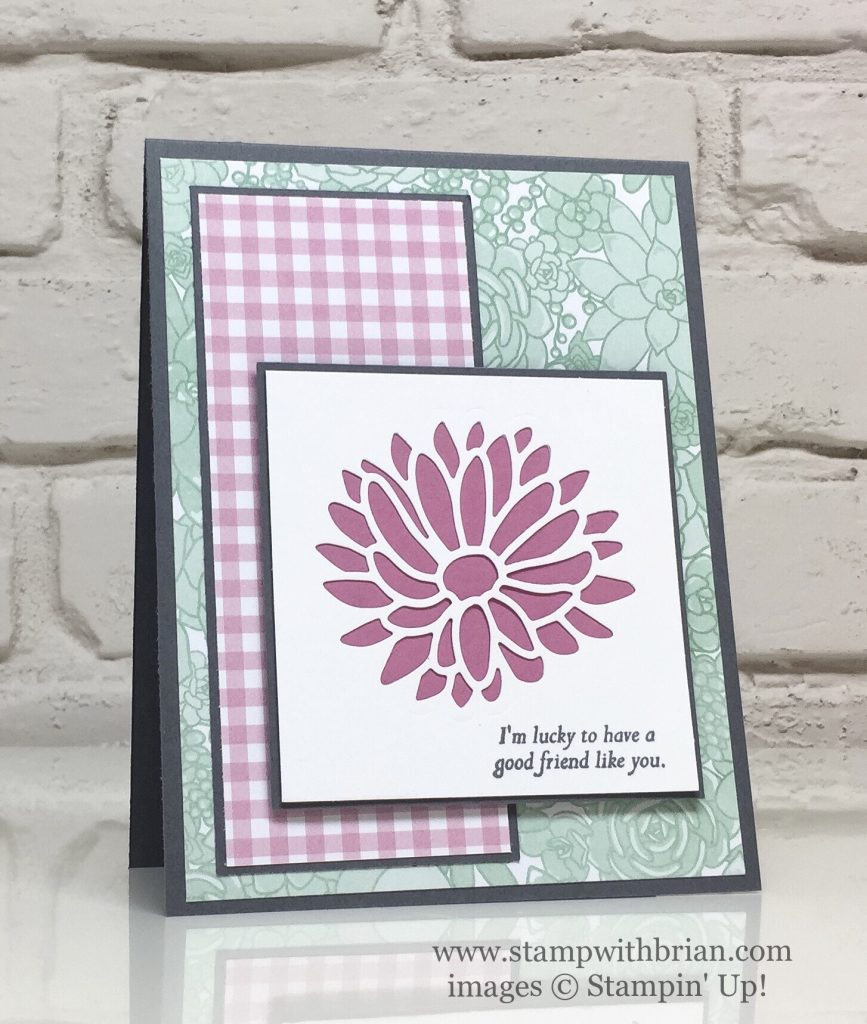 Special Reason, Stylish Stems Framelits Dies, Succulent Garden Designer Series Paper, Stampin' Up!, Brian King, FMS268
