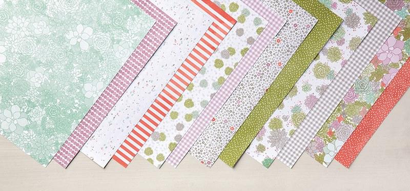 Succulent Garden Designer Series Paper, Stampin' Up!