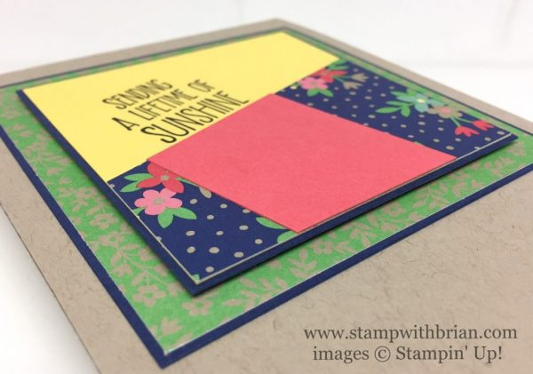 Sunshine Sayings, Affectionately Your Specialty Designer Series Paper, Stampin' Up!, Brian King, CTS212