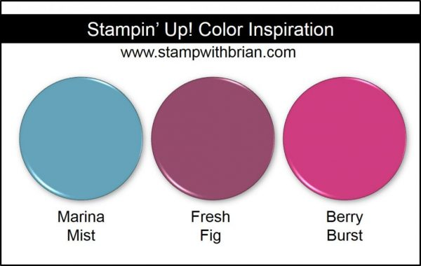 Stampin' Up! Color Inspiration,: Marina Mist, Fresh Fig, Berry Burst