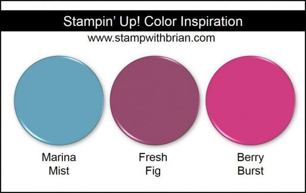Stampin' Up! Color Inspiration,: Marina Mist, Fresh Fig, Berry Burst