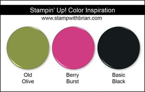 Stampin' Up! Color Inspiration: Old Olive, Berry Burst, Basic Black