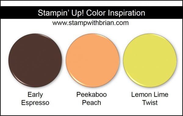 Stampin' Up! Color Inspiration: Early Espresso, Peekaboo Peach, Lemon Lime Twist