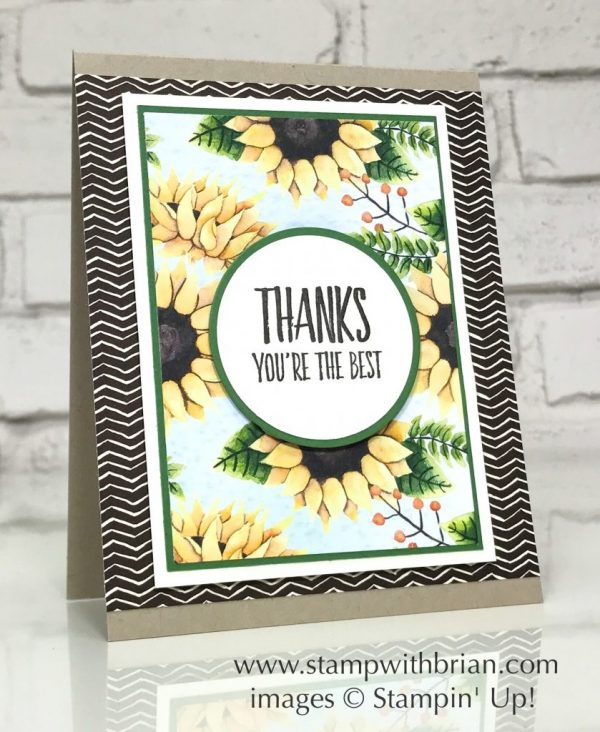 All Things Thanks, Painted Autumn Designer Series Paper, Stampin' Up!, Brian King