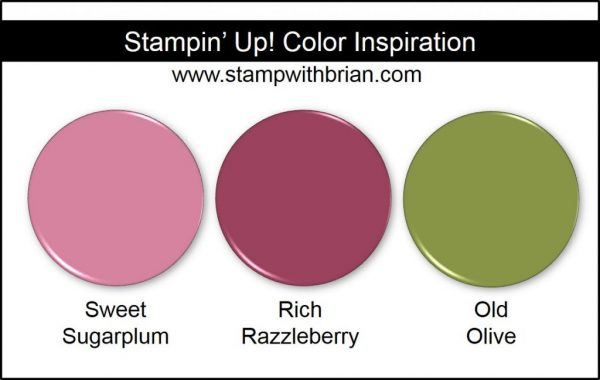 Stampin' Up! Color Inspiration: Sweet Sugarplum, Rich Razzleberry, Old Olive
