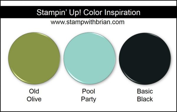 Stampin' Up! Color Inspiration: Pool Party, Old Olive, Basic Black