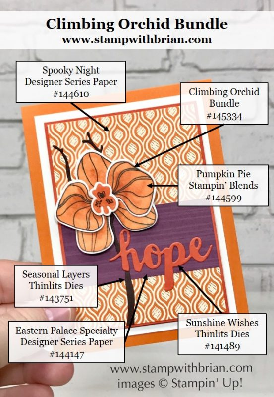 Climbing Orchid, Sunshine Wishes Thinlits, Stampin' Up!, Brian King, FabFri124