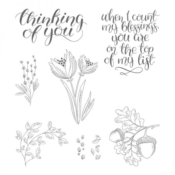 Count My Blessings, Stampin' Up!, 144790