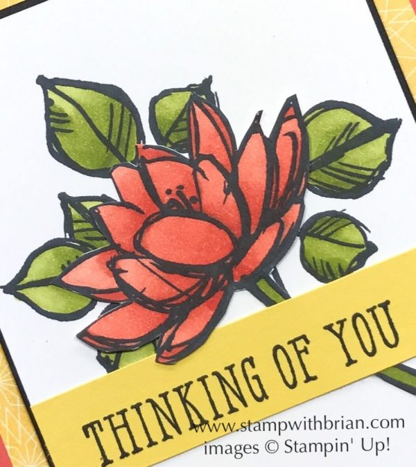 Remarkable You, Window Shopping, Stampin' Up!, Brian King, FMS309