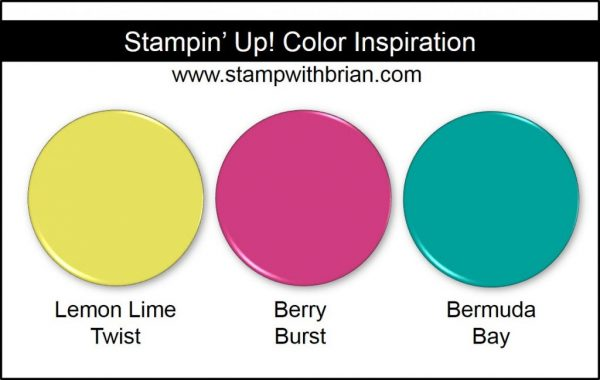 Stampin' Up! Color Inspiration: Lemon Lime Twist, Berry Burst, Bermuda Bay