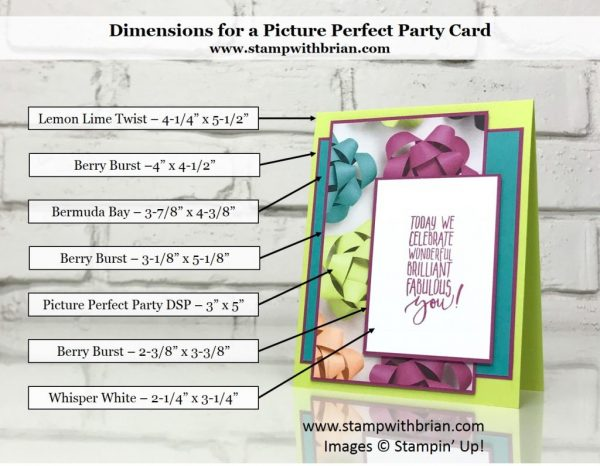 Picture Perfect Birthday, Picture Perfect Party Designer Series Paper, Stampin' Up!, Brian King