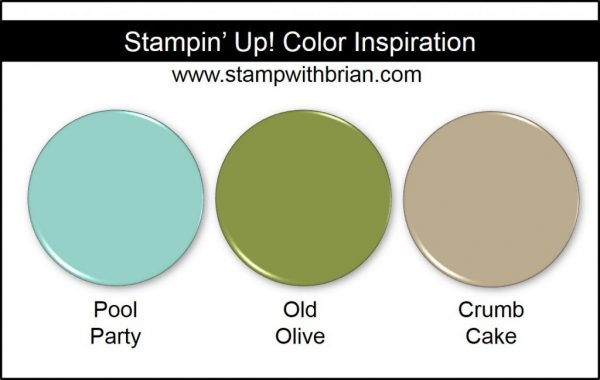 Stampin' Up! Color Inspiration: Pool Party, Old Olive, Crumb Cake