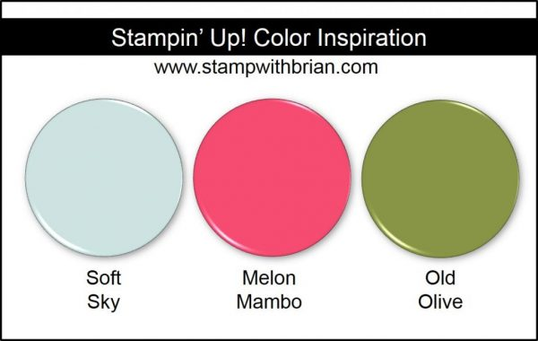 Stampin' Up! Color Inspiration: Soft Sky, Melon Mambo, Old Olive