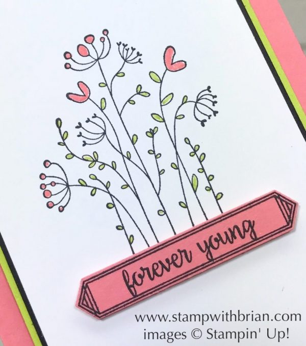 Flirty Flowers, Happy Birthday Gorgeous, Stampin' Up!, Brian King